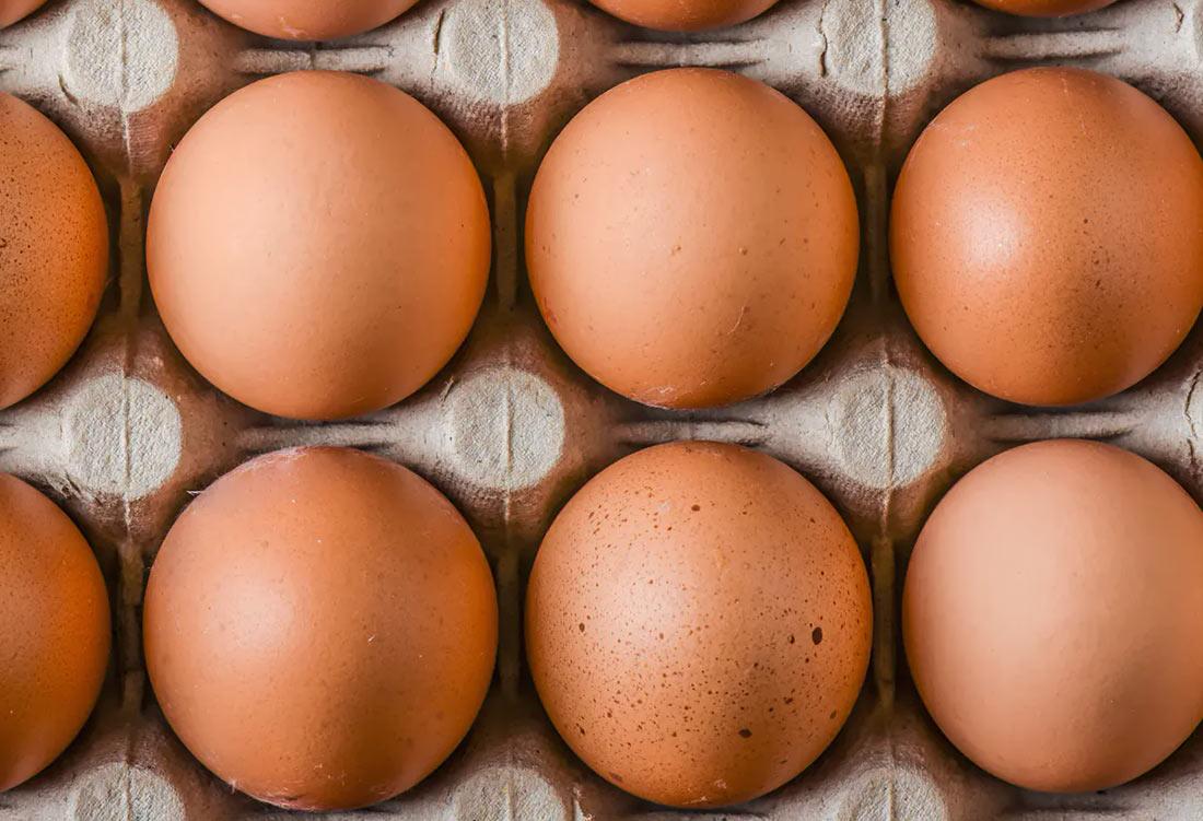 Производство яиц в Украине заметно сократилось