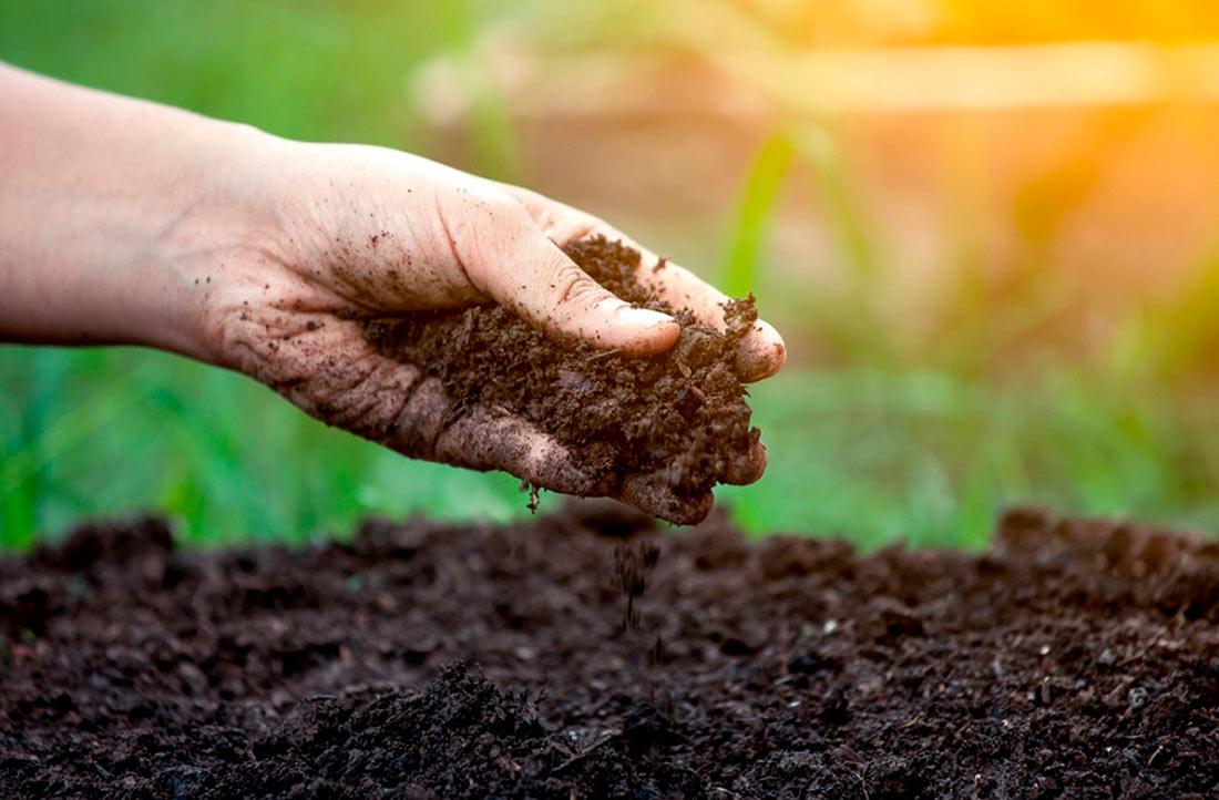 Земельна реформа: скільки угідь встигли продати