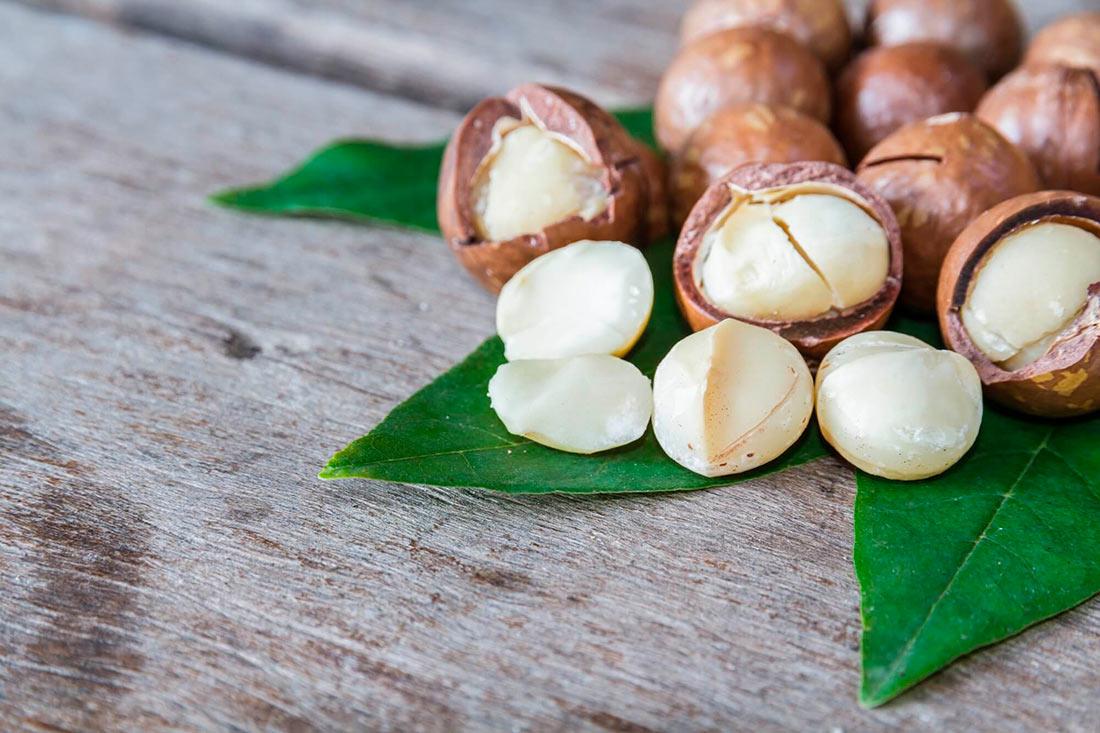 Самый дорогой орех в мире (ФОТО)