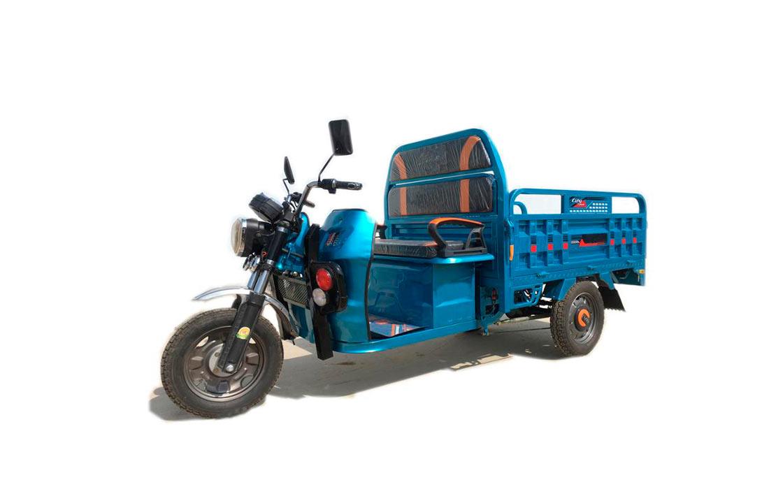 Южноафриканские фермеры пересели на электрические трициклы
