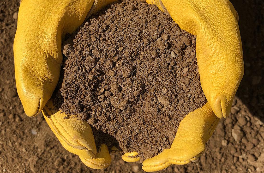 Скільки придбали землі: Мінагро оприлюднило нові дані