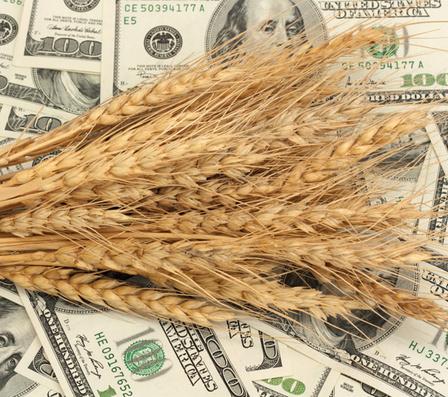 Аграрный сектор Украины наращивает экспорт