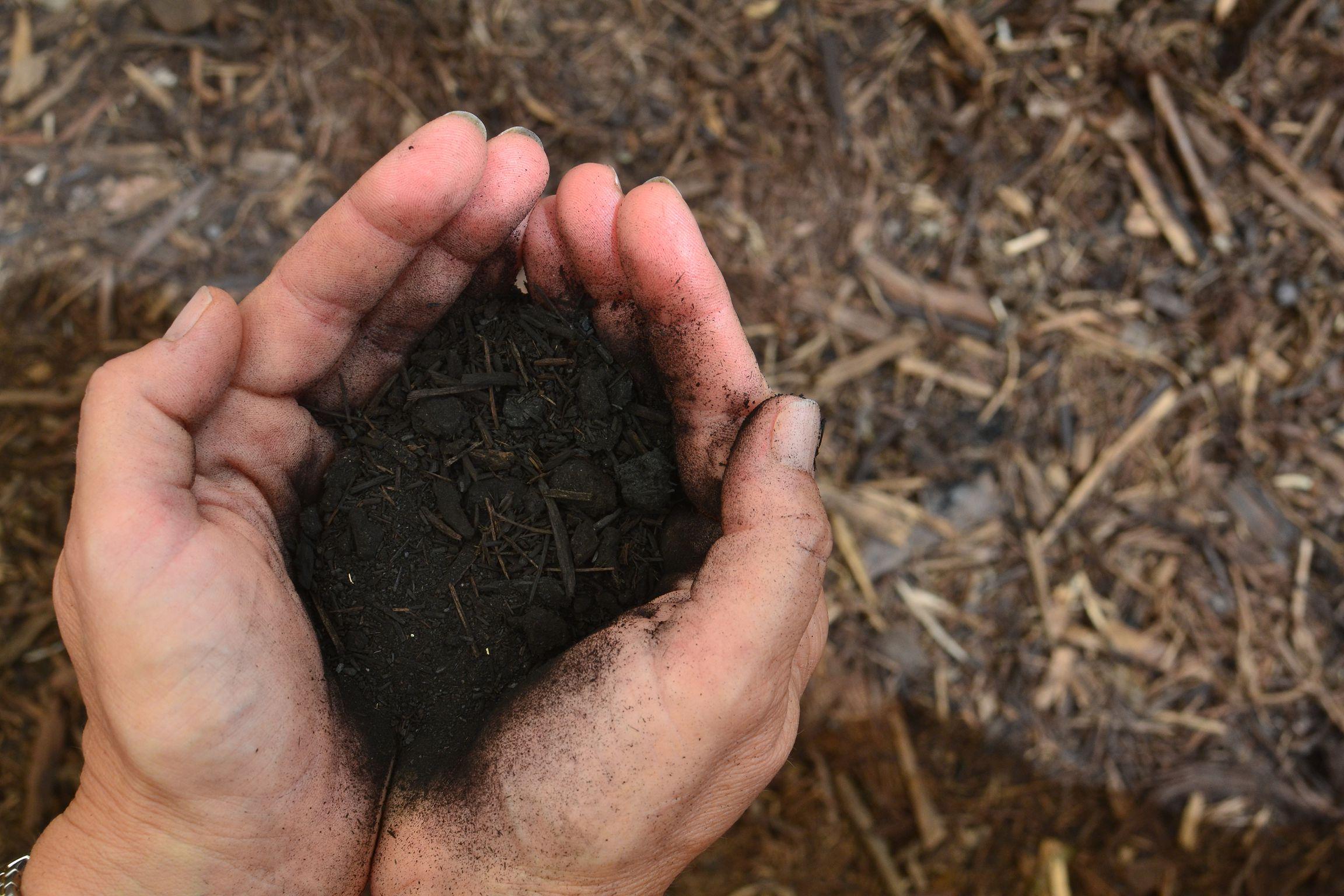 Древнейший метод повышения плодородия почвы
