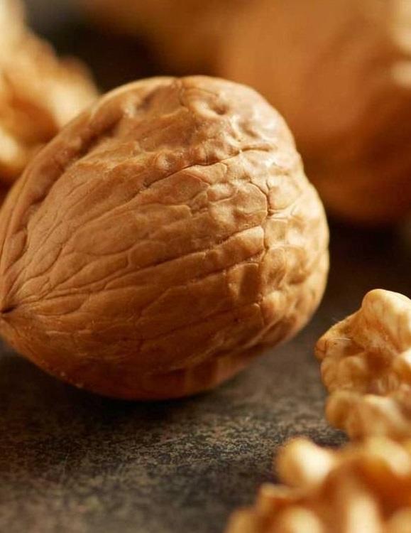 Урожай грецких орехов в Украине под угрозой