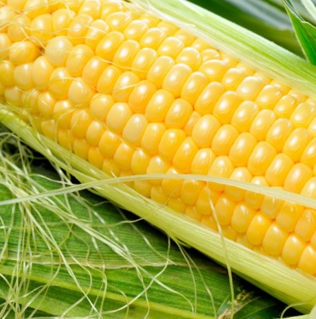 Кукуруза значительно улучшает зрение