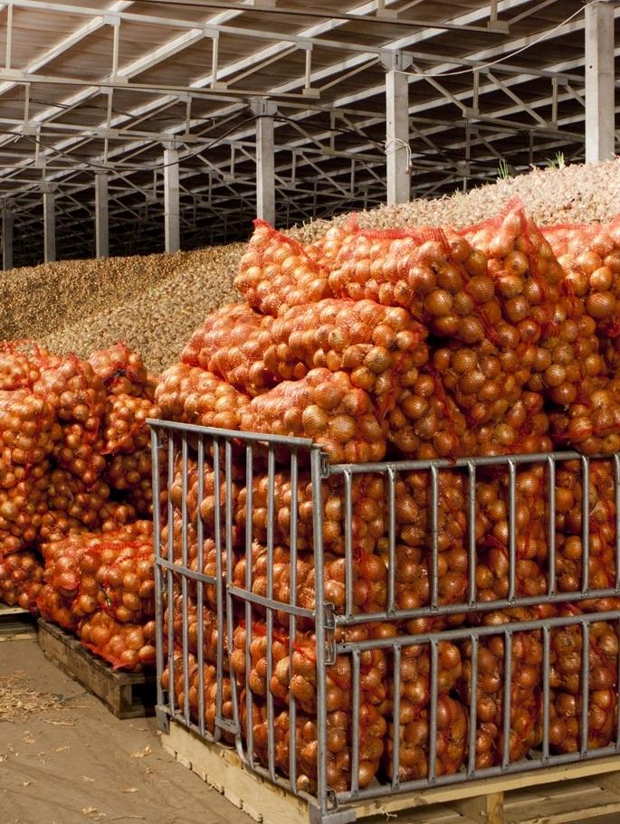 Минагропрод простимулирует строительство новых баз хранения овощей и фруктов