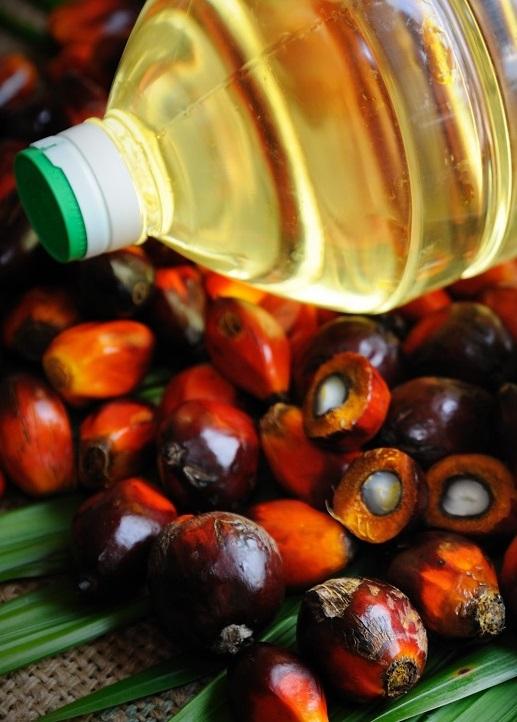 Украина нарастила импорт пальмового масла