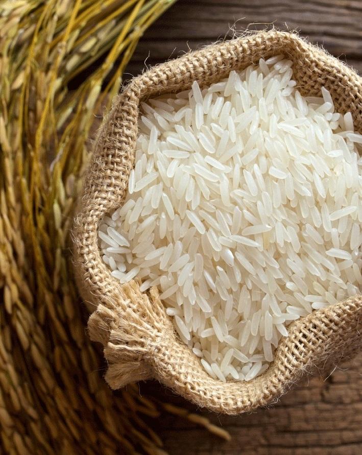 Ученые активно работают над выведением суперстойкого риса с высокой урожайностью