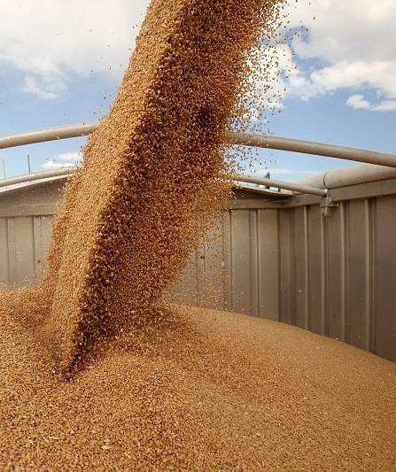 В правительстве задумались о ликвидации Аграрного фонда