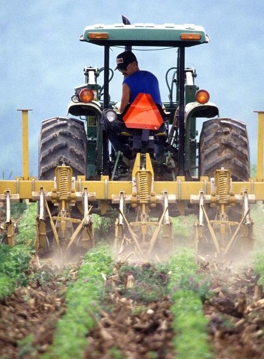 Аграриям дадут аванс на сумму 1,7 млрд грн