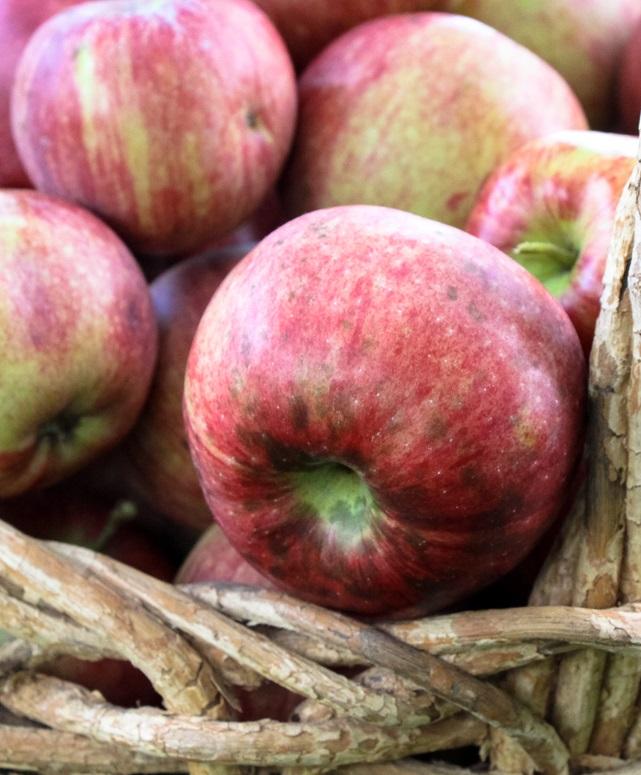 Украинские яблоки завоевывают популярность в мире