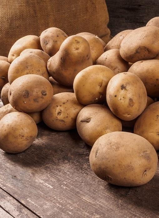 Наша страна стала экспортировать еще больше картофеля