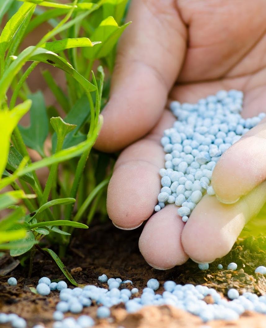 Правительство не станет облагать пошлинами минеральные удобрения