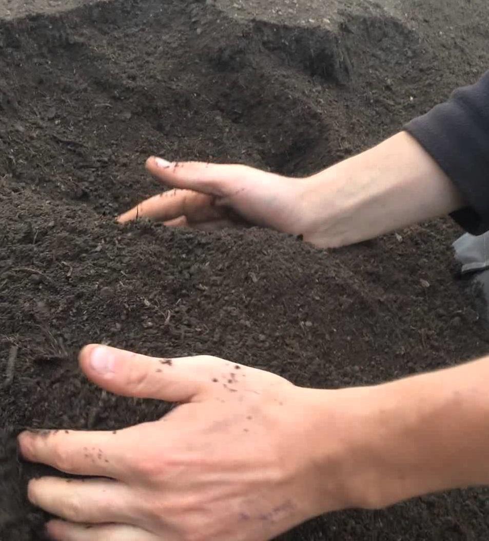 Украинские аграрии не согласны с введением рынка земли сельхозназначения