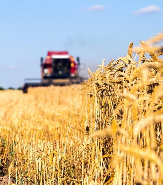 Начался активный приток инвестиций в украинский АПК
