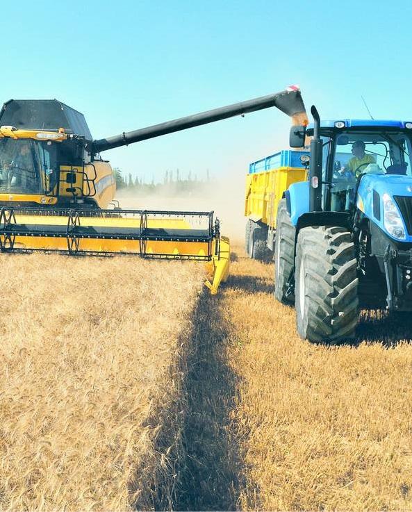 Аграриям выплатили дотаций на десятки миллионов гривен больше, чем месяцем ранее