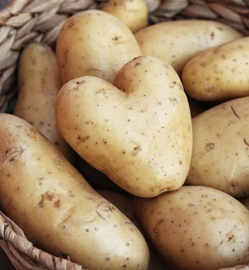 Эксперт прогнозирует подорожание картофеля