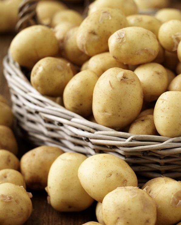 Украина может увеличить экспорт картофеля в ЕС