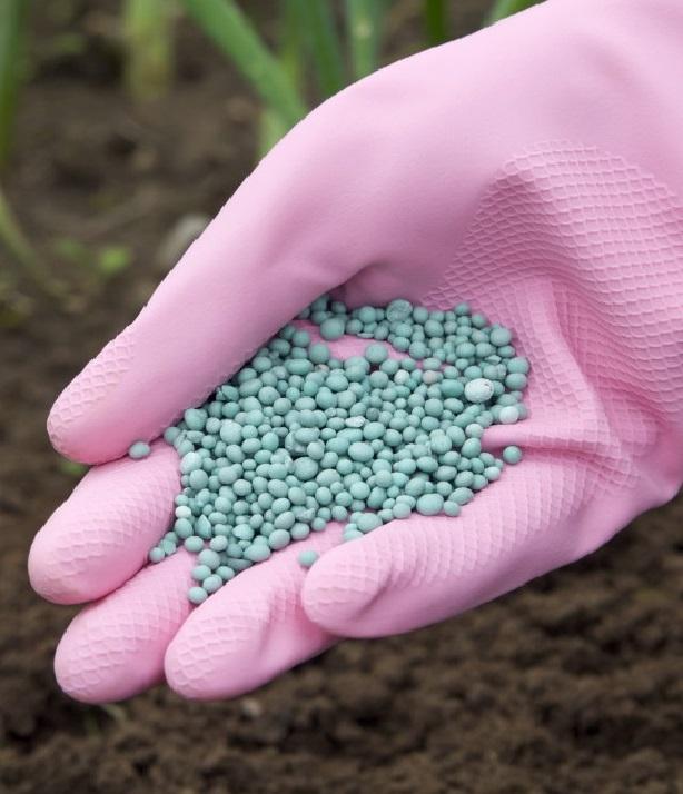 Аграрии обеспокоены ростом цен на азотные удобрения