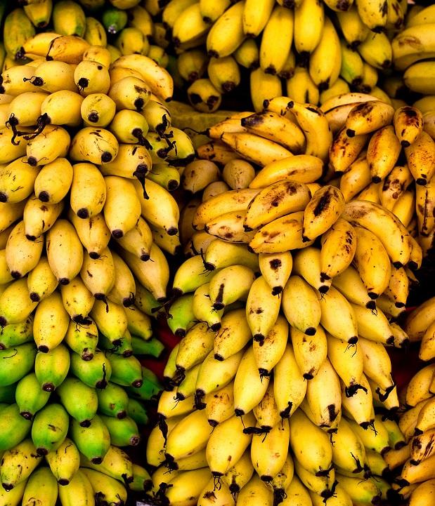 Мировое производство бананов находится под угрозой