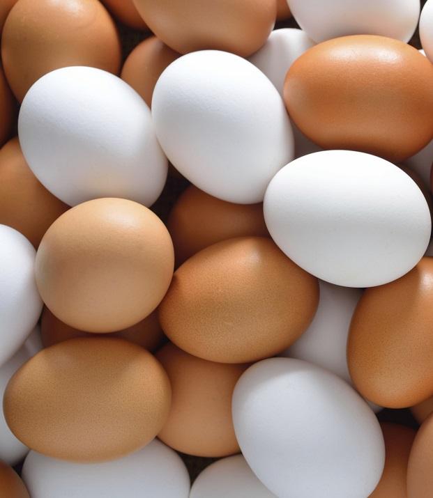Куриные яйца могут значительно прибавить в цене