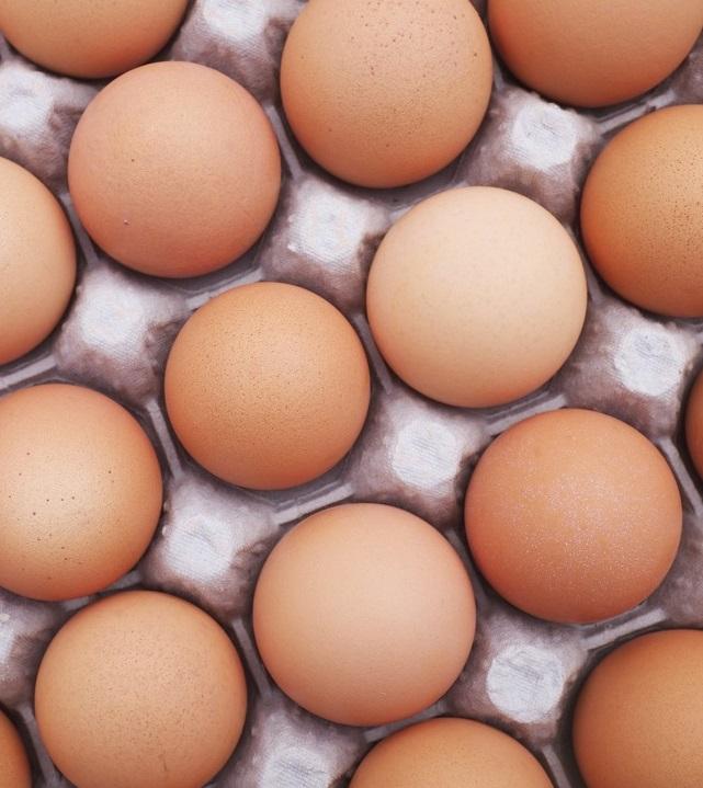 За 11 месяцев Украина отправила на экспорт 80 тыс тонн яиц