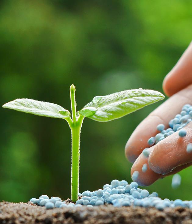 Аналитики оценивают обеспеченность аграриев минеральными удобрениями на 32%