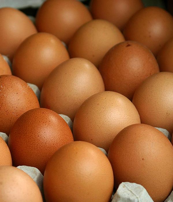 Экспорт украинских яиц составил свыше 7 тысяч тонн