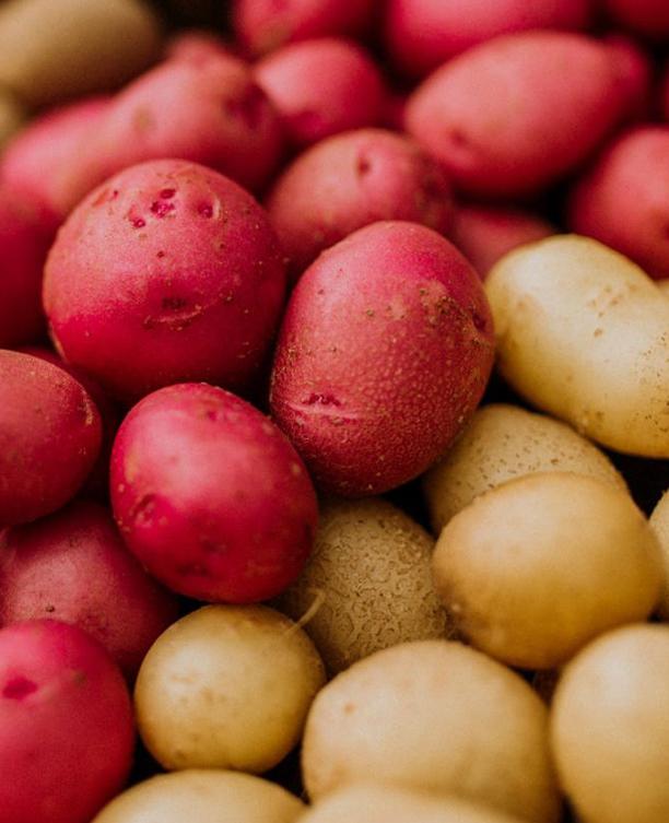 Картофельная аналитика от «Клеффманн Групп Юкрейн»