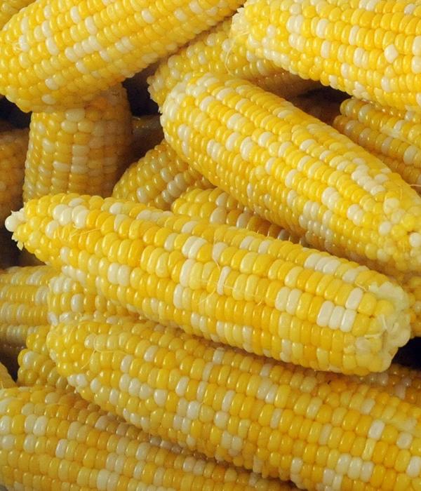 Кукуруза: потребление, производство, конкуренты…