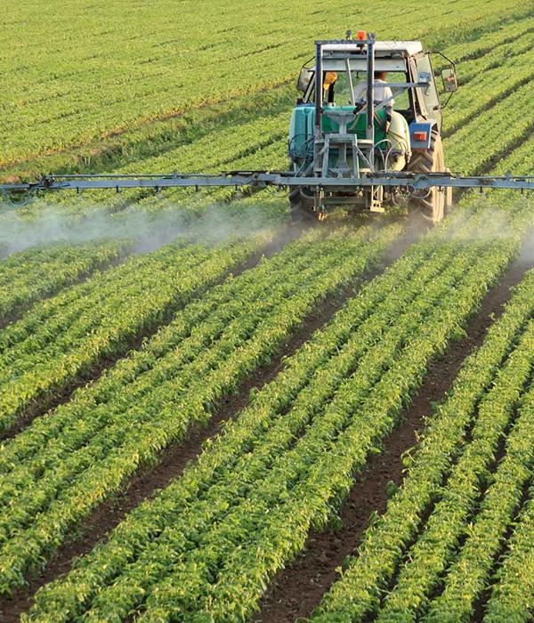 Физиоактиваторы снижают использование инсектицидов на 40%