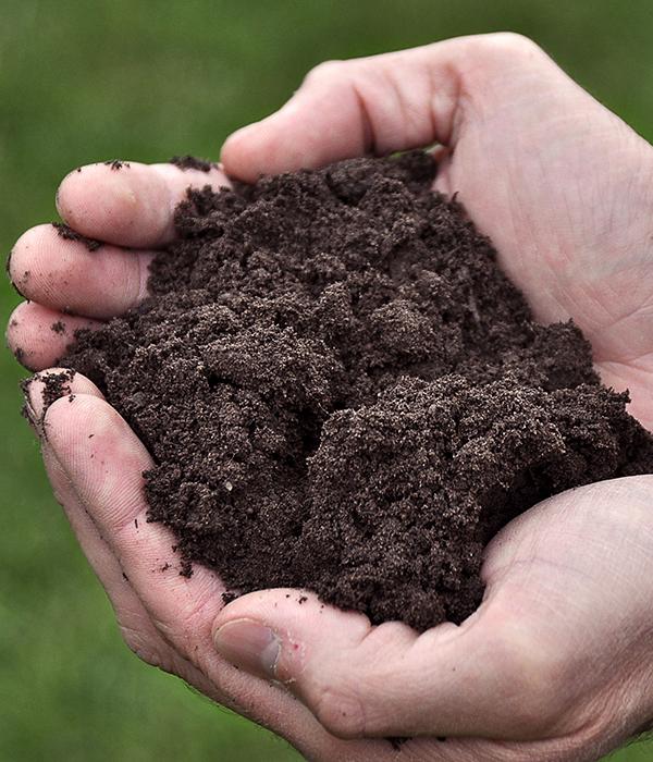 Кабмин инициирует передачу сельхозземель фермерам