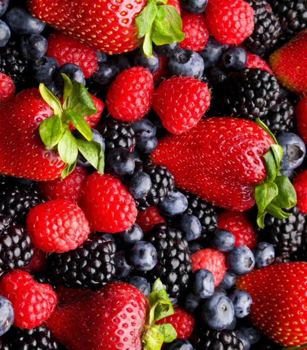 Производство ягод в Индии набирает обороты