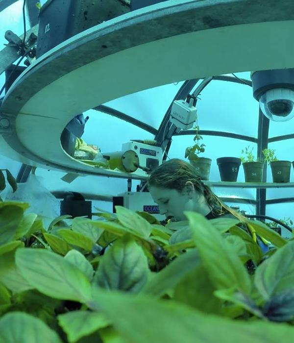 В Италии сельхозкультуры выращивают в подводных биосферах (ВИДЕО)