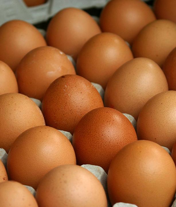 За три месяца Украина произвела свыше 3,5 млрд штук яиц