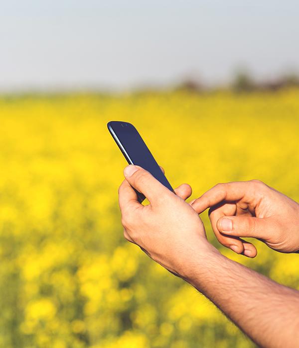 ТОП-5 мобильных приложений для фермеров (ФОТО)