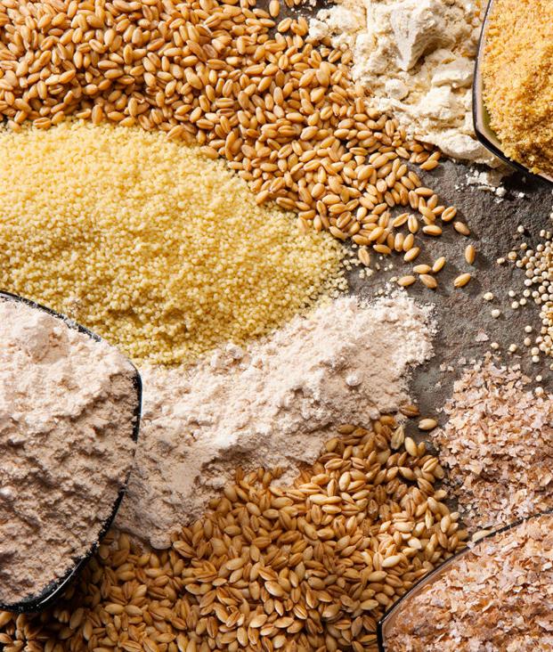 Украина нарастила поставки аграрной продукции в ЕС
