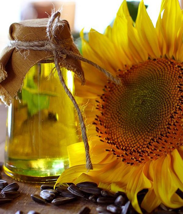 В АМКУ проверят рынок подсолнечного масла