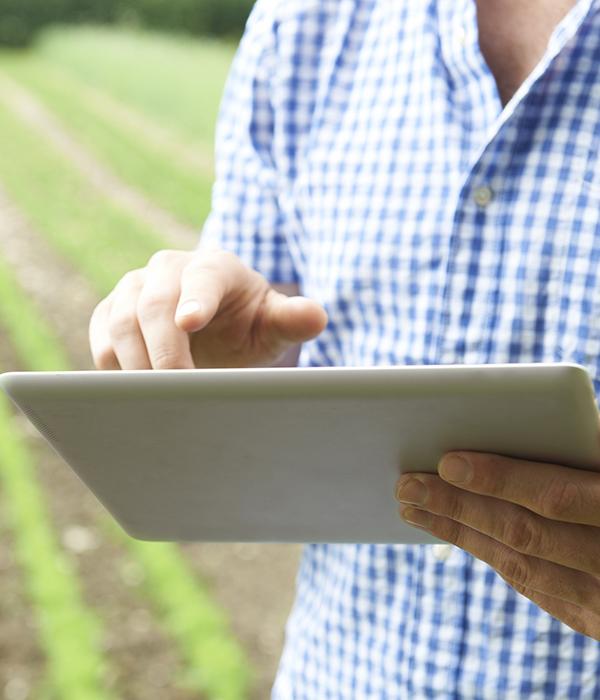Мобильная платформа AGRI объединила участников зернового рынка