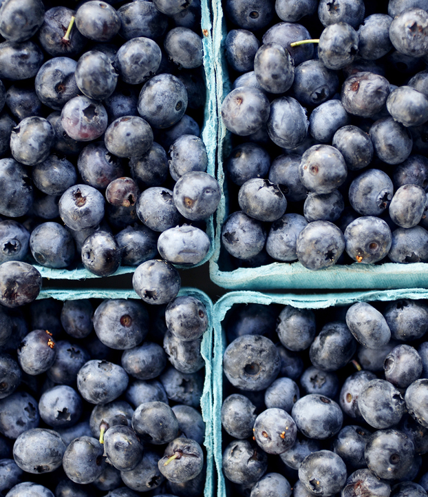 Низкие цены разочаровали европейских производителей ягод