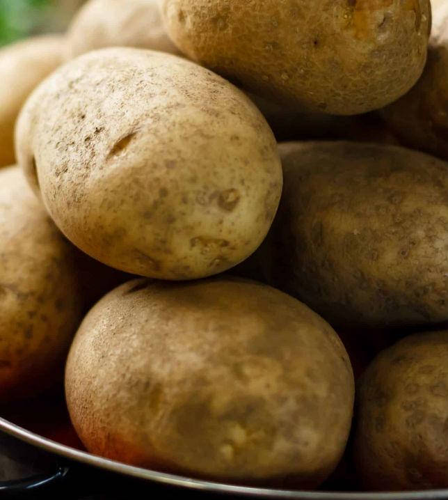 Европа ищет в Украине картофель и лук для Африки (эксклюзив)
