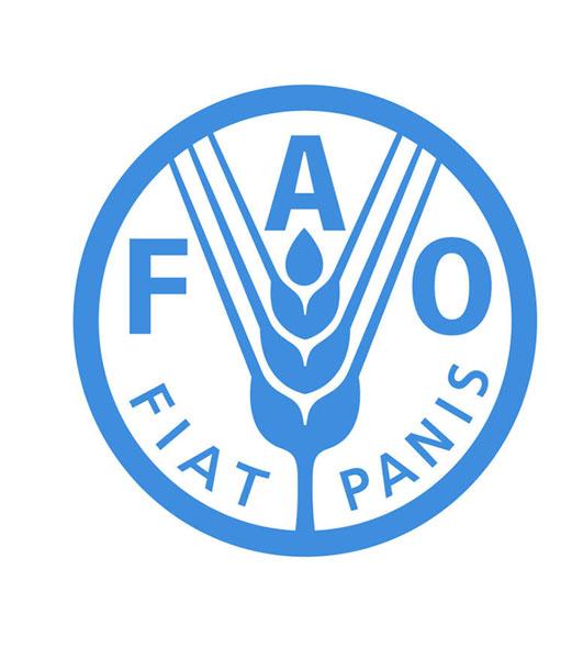 ФАО прогнозирует мировое производство зерновых на уровне ниже прошлогоднего