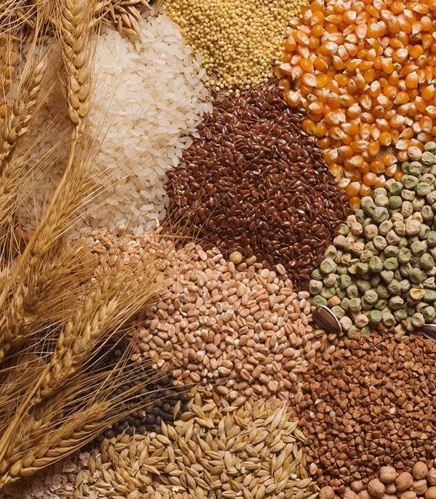 IGC повысил прогноз мирового производства зерна