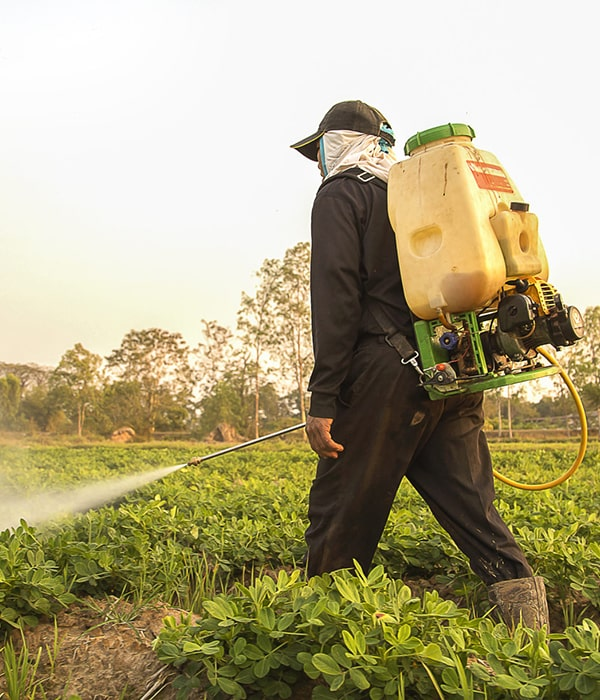 Исследователи открыли способ более эффективного применения пестицидов