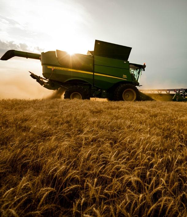 Нужно уменьшать долю аграрного сектора в ВВП — эксперт (эксклюзив)