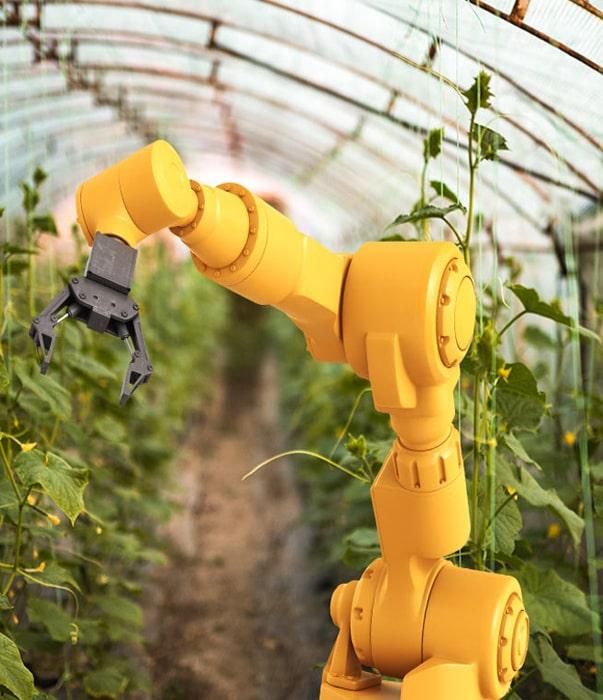 В США открылась первая роботизированная ферма