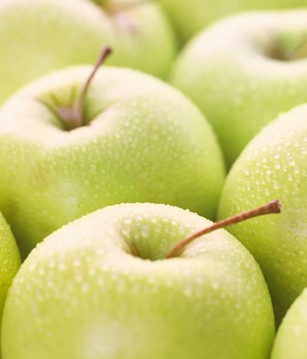 Украинские яблоки: экспорт, цены
