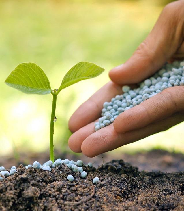 Аграрии полностью обеспечены удобрениями, Аграрный фонд предлагает выгодные условия