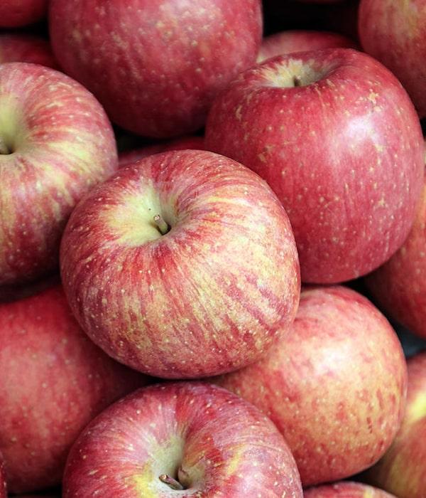 Поляки серьезно занервничали из-за украинских яблок (ФОТО)