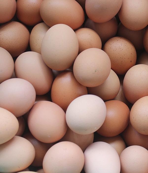 Яйца: экспорт и производство